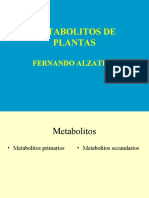 Metabolitos_plantas_1