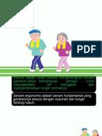 Dokumen.tips Power Point Senam Lansia