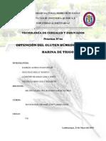 Pràctica de Cereales - Informe Final