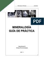 GUÍA DE PRÁCTICA 2017-1.pdf