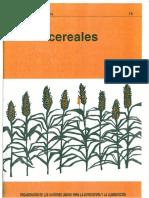 Mejores cultivos Fao 15