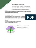 Reproducción de Las Plantas Con Flor