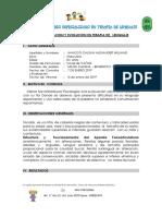 alexander informe.docx
