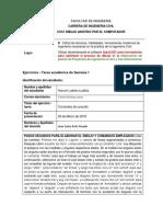 Harumi Ludeña Informe