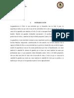 Razas Peru 2