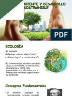 Medio Ambiente y Desarrollo Sostenible 2018-3