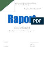 Java_lab2R Implimentarea Metodelor de Sincronizare a Proceselor