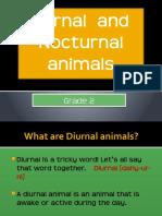 Nocturnal Animalsmegs.pptx