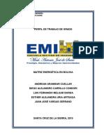 Matriz Energetica en Bolivia (2019)