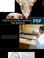 Técnicas de fijación y preservación