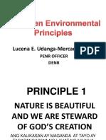The Seven Envi Principles
