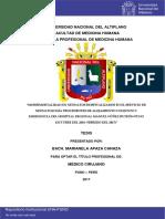 Apaza Canaza Marianela