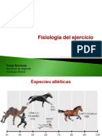 19 Fisiologia Del Ejercicio