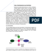 Proteinas Enfermería