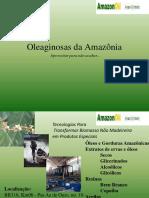 Apresentação AmazonOil 2019.pptx