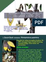 Kakao-1.pdf