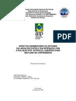 Aspectos Sedimentares Do Estuario Da Lagoa Dos Patos _subsidiosparaumplanodecontingencia(1)