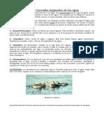 ACTIVIDAD Mitos y leyendas de las aguas 5 BASICO.doc