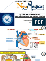 Caridologia Anatomia New Medical
