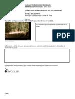 FORMATOS 7A-CTE (1).docx