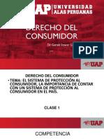 Clase D. Consumidor.1