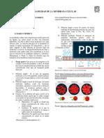III Informe Biologia