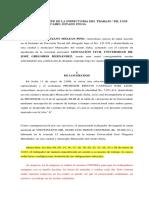 Calificacion de Despido Profe Jose Rincon