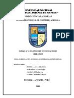 TEMA DE ENSAYO 1.docx