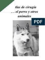 Atlas de Cirugia en El Perro
