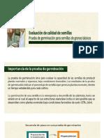 Prueba de Germinacion de Semillas c10
