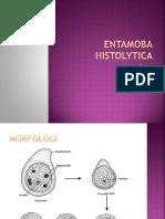 Entamoba Histolytica