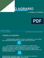 TRABAJO+AGRARIO.ppt