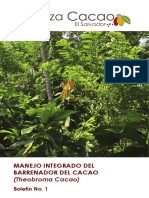 Manual Del Manejo Del Barrenador Final