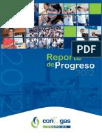 Reporte de Progreso 2012 (1)