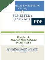 Chp 5 Major Metabolic Pathways