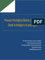 01. Procesos Psicológicos Básicos y Complejos