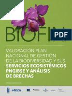 Medio ambiente Biofin Valoración PNGIBSE