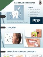 Estrutura geral dos dentes
