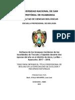 Avifauna de los bosques montanos de las localidades de Toccate y Cajadela durante dos épocas del año en el distrito de Anco, La Mar - Ayacucho. 2'17 - 2018