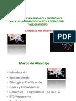 ETG Dr. Cavazos