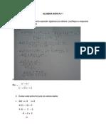 Algebra Basica 1