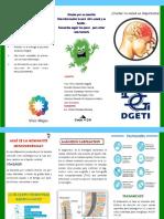 folleto de victor.pdf