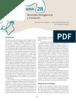 Cellular Mechanisms Underlying Obesity Vascular Stiffness.en.Es