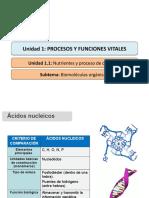 Biomoleculas Organicas Acidos Nucleicos y Proteinas