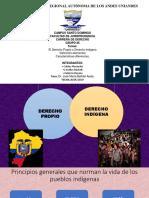 EXPO PLURALISMO - copia.pptx