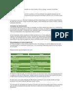 Cuestionario n 3 Estructura de La Materia y El Átomo