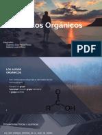 Quimica Organica Acido