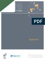 Gci Capgemini Future Supply Chain 2016 Appendix