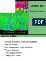 Visual, Auditory, And Chemical Systems