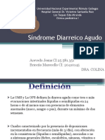 Síndrome Diarreico Agudo (Marcello y Jesus)